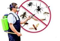 Pest infestation is really a big problem which causes many health issues. Installmart offers certified pest control services in your area with the aim to keep your home or business safe for these unwanted intruders. 