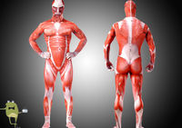 Attack on Titan Colossal Titan Cosplay Body Suit Costume