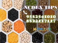 ncdex tips - star india market research-.JPG