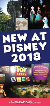 Disney is constantly adding new things at the Walt Disney World Resort every year. It can be hard to keep up with the latest openings and what to expect on your
