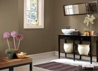 benjamin moore paint color: taupe