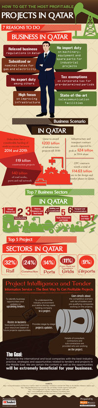 ow To Get The Most Profitable Projects In Qatar [Infographic]