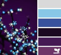 Design Seeds®   for all who � color   color sparkle. Love these colors for a room in house not sure which room!