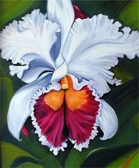orchid paintings | Orchid Paintings in Oil by Janis Stevens