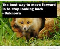 The best way to move forward quote
