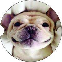 2 Absorbent Car Coasters of Dog Puppy. Car Accessories for her, Abstract Auto Coaster, Coaster, Cup Holder Coaster, Gift For Her, For Him $14.00