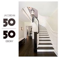 From Elements of Style, the Little Green Notebook suggestion for perfect dark brown not red/not grey floors: 50/50 Minwax Jacobean and Ebony. Dark downstairs, whitewashed upstairs, connected by stairs this way?