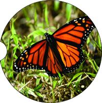2 Absorbent Car Coasters of Butterfly. Car Accessories for her Animal Auto Coaster, Coaster, Cup Holder Coaster, Gift For Her, For Him $14.00