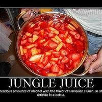 """Jungle Juice is one of the best and ultimate party drinks. There are many different versions, but this is the recipe for """"real"""" jungle juice. Many others simply contain just vodka and a bunch of different juices - basically a giant cocktail. Here ..."""