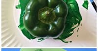 Learn how to make the shape of a shamrock out of green bell peppers! This is a fun St Patrick's day craft for the kids to make. Very cheap and easy DIY project!