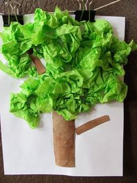 Tissue tree craft project. Perfect activities to match our Book List on trees