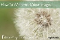 With rampant popularity of Pinterest, it is more important than ever to learn how to watermark images for your blog. This step-by-step post will help.