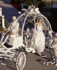 Yard Decor -Cinderella carriage (make or rent?) I bet an easy make if you shape wire on top of a existing carriage. Guest could have rides. Could be bride and grooms get away.
