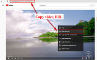 Follow this article to learn two simple methods of 4K YouTube to MP4 download.