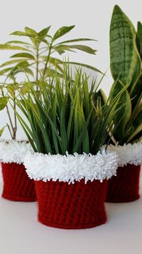 Crochet Holiday Planter Cover Pattern -- great gift!