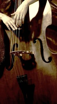 The Cello is my favorite musical instrument. I want to learn to play one day... Although this could be a pic of a Bass.