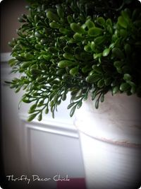 DIY topiary, Shes amazing! Thrifty Decor Chick: Faux faux good