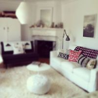 My Flower Fields cushions gracing the sofa of