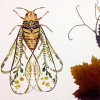 Artist Helen Ahpornsiri makes delicate colorful illustrations representing animals. She creates her artworks from pressed leaves of trees or plants. She places