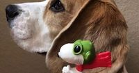"""Snoopy and beagle!Hope you're doing well.From your friends at phoenix dog in home dog training""""k9katelynn"""" see more about Scottsdale dog training at k9katelynn.com! Pinterest with over 20,400 followers! Google plus with over 143,000 views! Y..."""