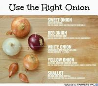 great tips for cooking with onions