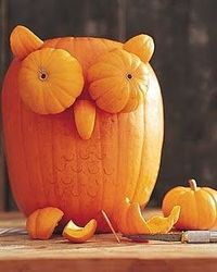 Pumpkin Owl - too cute!