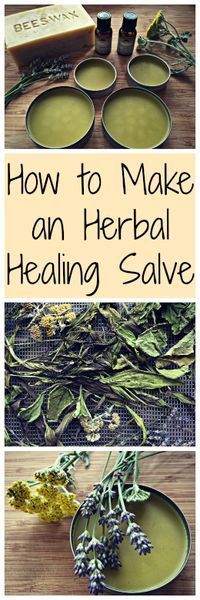 Once you start collecting medicinal herbs you'll want to do something with them. I show you how to make an herbal salve, the perfect way to use them!