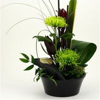 High-cut decoration in black bowl with green dekokryss, brown / red leucadendron, Skimmia, formiablad, aspidistra, straws and black sticks.