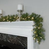 National Tree 9 Foot by 10 Inch Norwood Fir Garland with 50 Clear Lights (NF-9ALO-1) $27.03